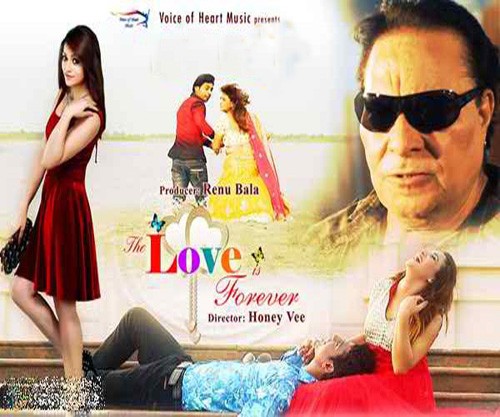 The Love is Forever, hindi movie review