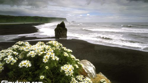 Iceland invites Bollywood